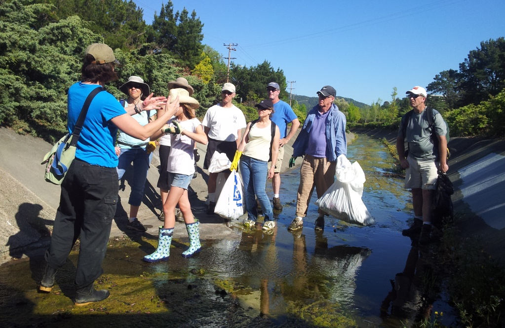 April 20 Earth Day Watershed Hike: Gallinas Creek Baylands