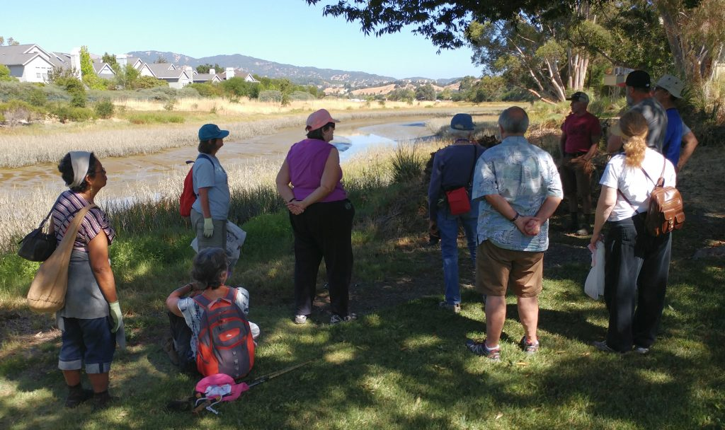 Hiking along Gallinas Creek in Santa Venetia