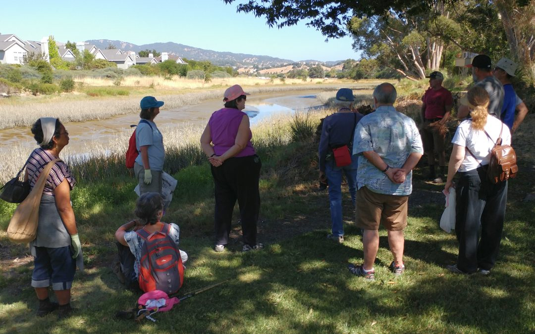 August 7, 2016 Watershed Hike: Lagoon to Levees
