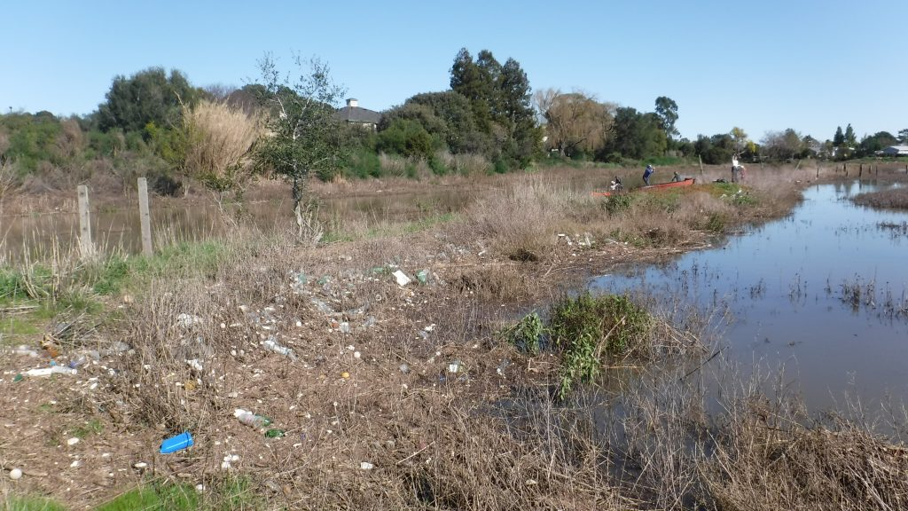 North Fork Gallinas Creek - Lots to clean up!