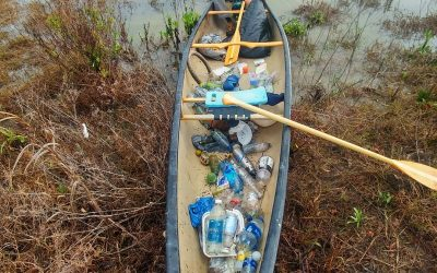 Feb 8, 2020 King Tide Creek Cleanup